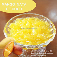 DELICIOUS NATA DE COCO IN SYRUP - HIGH QUALITY - VIET NAM