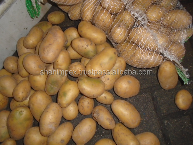 FRESH POTATOES PAKISTAN ORIGIN