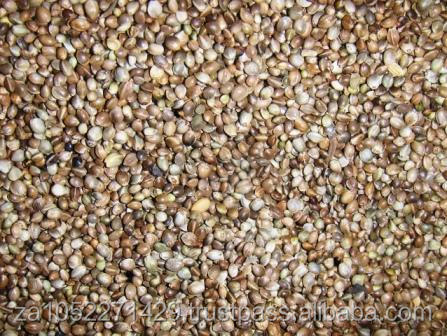Hemp Seeds/Best quality/ competitive price /fast delivery time /wholesale supply.