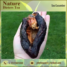 Natural Frozen Sea Cucumber for Improving Immune System