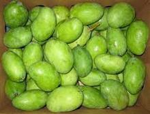 Quality Fresh Green Mango