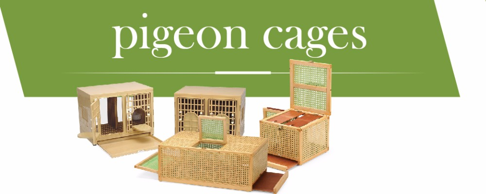 843 Taiwan design Pet product,Dog Cat Transport Cages,3coior Plastic pet carrier (With Sunroof)