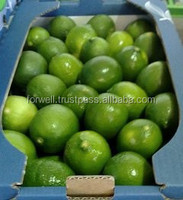 price of lemon fruit