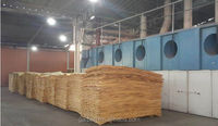 4*8ft Natural Pine Veneer for plywood (4'x8')