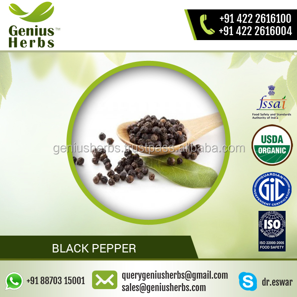Popular Spice Black Pepper Available with Various Benefits
