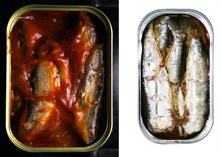 Canned Sardines in Oil and Tomato Sauce for sale / for sell
