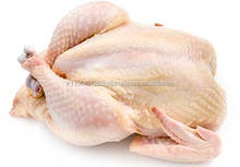 GRADE A HALAL CERTIFIED FROZEN WHOLE CHICKEN READY FOR SHIPMENT........