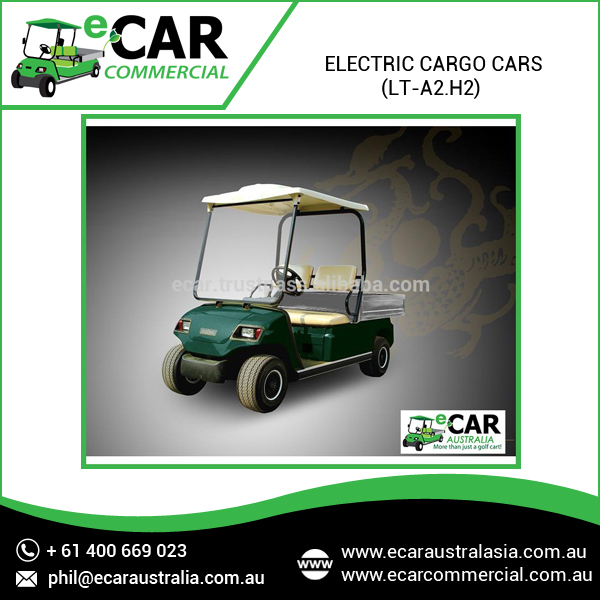 Ecar - Small 2 Seater Electric Pickup Cargo Truck (LT-A2.H2)