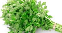 Fresh and Frozen Parsley for sale..