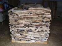 Wet Salted Cow Hides For Sale