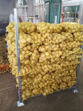 Fresh potato export to Pakistan with cheap price