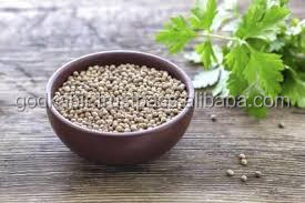 Wholesale price and indian market coriander seeds good taste and healthy and natural coriander seeds