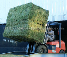 Best Quality Alfalfa Hay,Timothy Hay and Bermuda Hay Now in Stock.