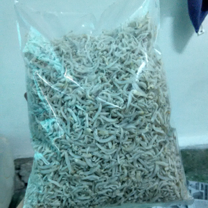 Dried Anchovy With Head Or Headless (Sprats) Best Price/ Dried Anchovy 2016 *price is negotiable