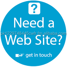 Develop your business website