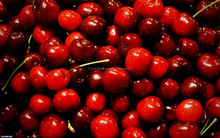 fresh cherries fruits for sale