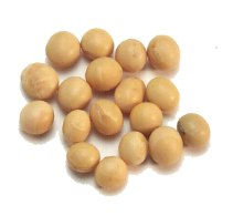 high protein Soybean for sale whole soy bean