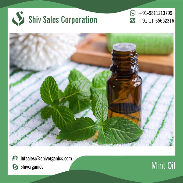 Top Quality Mint Oil for Digestion Problems and Bad Breath