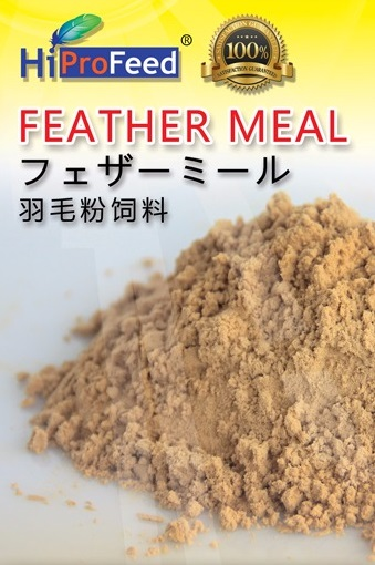 Feather Meal for Animal Feed, Poultry Meal, Feather Meal