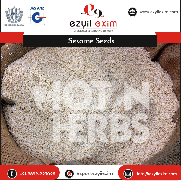 Delicious Taste 100% Healthy Dried Sesame Seeds for Food Making