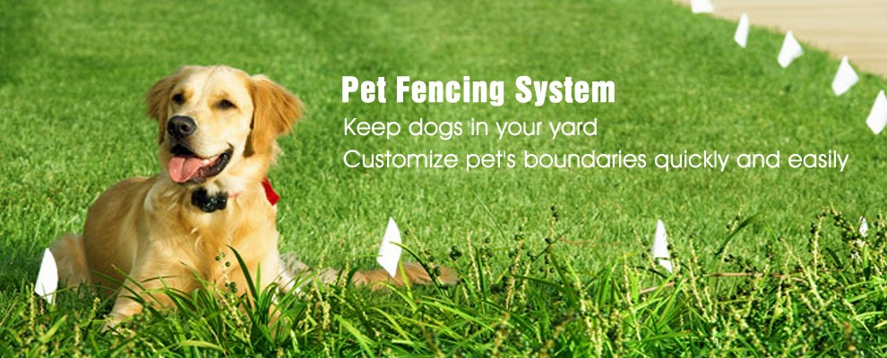 Eco Friendly Innovative Products Underground Invisible Electric Fence for Dogs