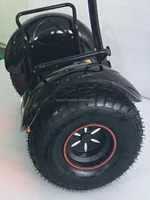GoGoA1 19 inch self balancing Electric ATV scooter