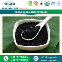 Organic Nigella Seeds/ Nigella Sativa/ Black Cummin Seeds for Sale