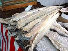 High Quality Grade A Dried StockFish / Stock Fish for Sale