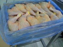Frozen Oiled Cooking Chicken Leg / Chicken Thigh / Chicken Drumsticks