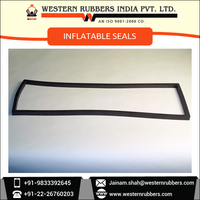 Most Demanded Range of Superior Quality Inflatable Seals at Affordable Rate