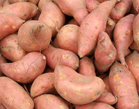 Fresh Sweet Potatoes.