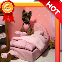 Production fun style dog bed for child cun