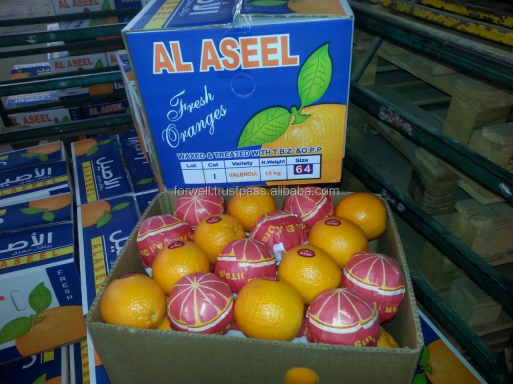 SUPER ORANGE FROM EGYPT WITH THE BEST PRICE AND THE BEST QUALITY ( NAVEL - VALENCIA ) ALL SIZE IS AVAILABLE