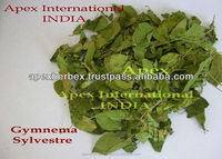 Gymnema Sylvestre Leaves / Gudmar / Gurmar /Gymnema T Cut