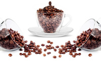 New Arrival - 100% Arabica Roasted Coffee Beans at cheap prices.