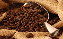Best Price ROASTED ARABICA COFFEE BEANS