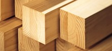 PINE WOOD TIMBER FOR GENERAL CONSTRUCTION AND FURNITURE WORKS