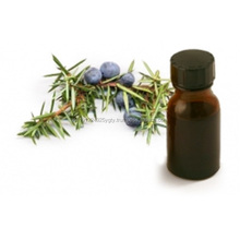 GMP Certified Pure Juniper Berry Essential Oil At Wholesale Price