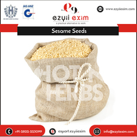 Fresh And Natural Dubai Sesame Seeds