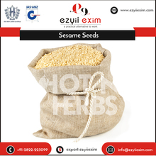Fresh and Natural Dubai Sesame Seeds Importers with High Demanded