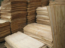RUBBER WOOD CORE VENEER, VIETNAM HOT VENEER WITH ROTARY CUT