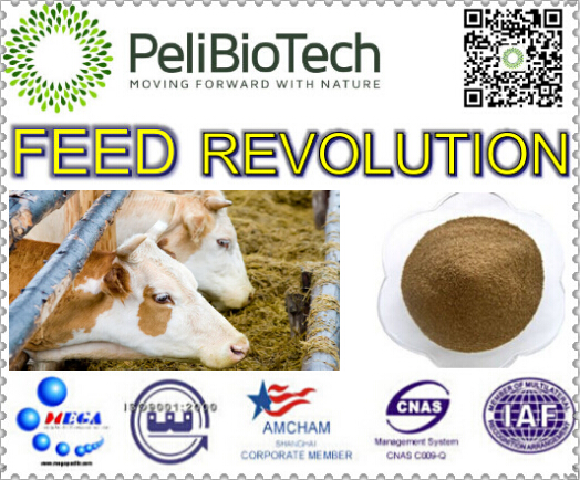 feed additives to improve livestock's absorption of nutrients, thus increase the growth rate