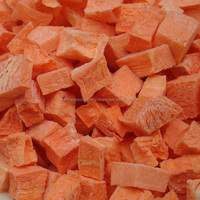 Freeze Dried Carrot from India
