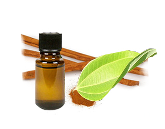 Cassia essential oil from Vietnam, high quality
