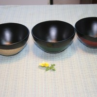 Urushi Craft Japanese Lacquer Ware Traditional
