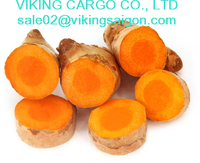 VIETNAM - FRESH TURMERIC - HIGH QUALITY - BEST PRICE