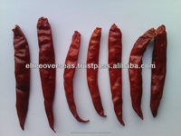 Sun dried S-17 stemless Teja chilli exporters to Pattaya