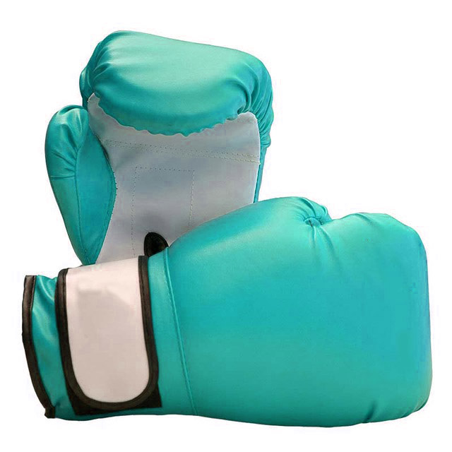 Boxing Gloves PU Leather with EVA Lining for Training Competition