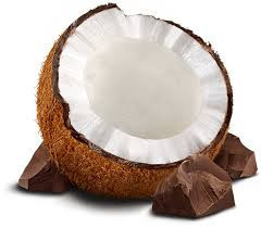 Fresh husked Coconut Suppliers South Africa