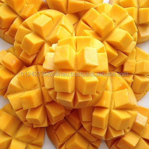 frozen mango fruit price with high quality